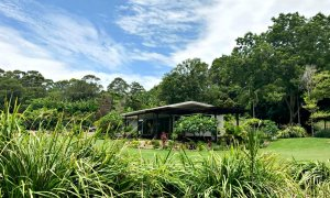 The Lily Pad at Byron is an oasis in the trees, just minutes to the beach.