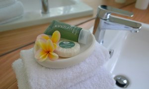 Complimentary shampoo, conditioner and soap from Sanctum is provided for guest use.