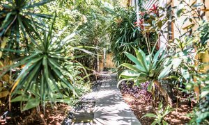 Byron Blisshouse - Byron Bay - Garden Villa - Side Path