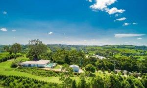 Byron Hills Hinterland Retreat - Byron Bay - Aerial View d