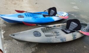 Capri Waters - Isle of Capri, Surfers Paradise - kayaks