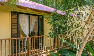 Casa Dan - Outdoor