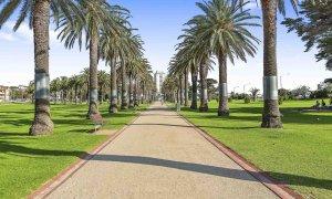Catani Gardens - St Kilda - Local Area e