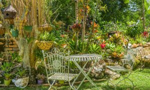 Chez Boulers - Lennox Head - Garden - outdoor sitting area