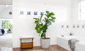 Pacific Ridge - Byron Bay - Bathroom with Bath Upstairs