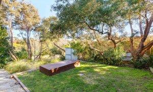 Queen Adelaide - Blairgowrie - Backyard