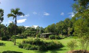The Lily Pad at Byron lush gardens