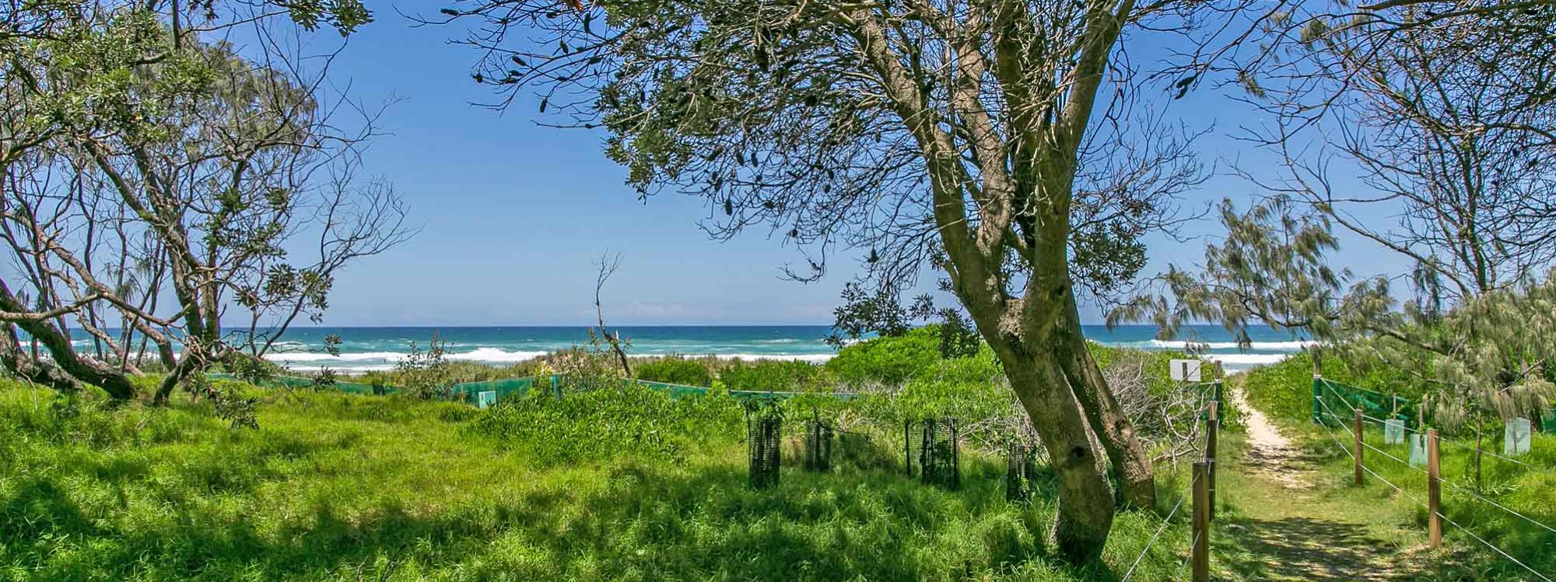 Beachwood - Byron Bay - Beach track to the beach 2