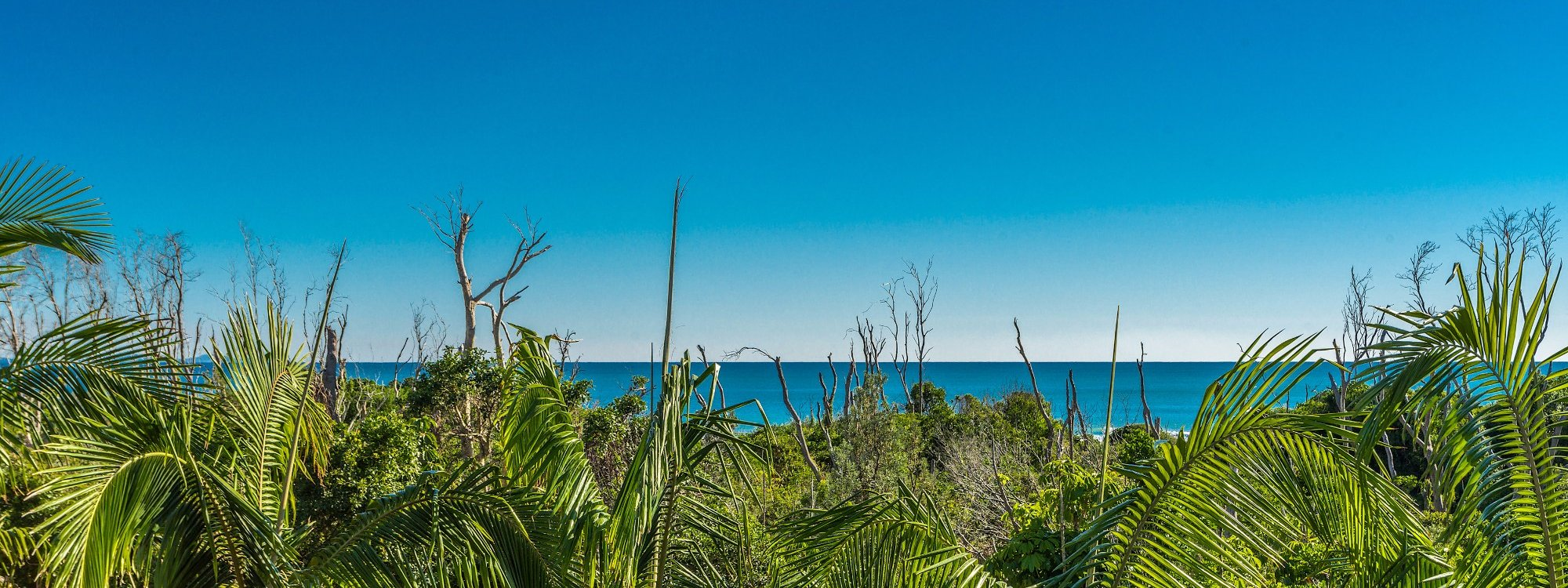 Kiah Beachside - Belongil Beach - Byron Bay - ocean views