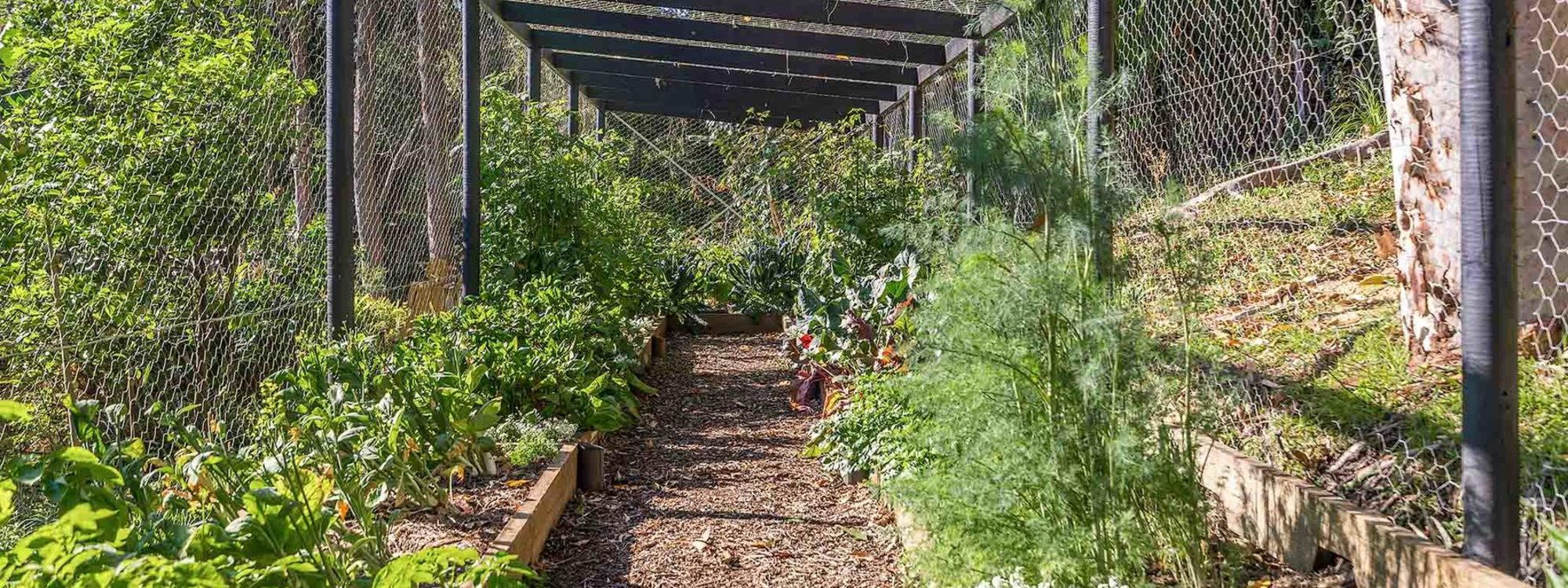 Ourmuli - Byron Bay - Veggie Patch